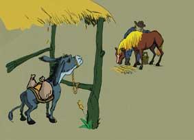horse&ass1